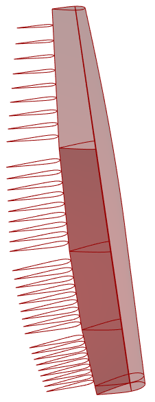 flaps_divided_sections.png